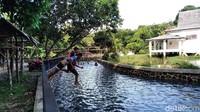 Pantauan detikcom, Sabtu (28/11/2020) suasana Situ Cisamping sepi dari wisatawan. Kawasan ini justru ramai oleh anak-anak warga sekitar yang asyik berenang.