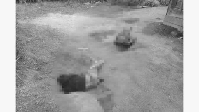 Satu Keluarga di Sulteng Jadi Dibunuh-Dibakar