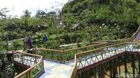 Tidak heran, mengingat taman seluas sekitar satu hektar ini berada di tengah-tengah perbukitan di Banjarnegara.