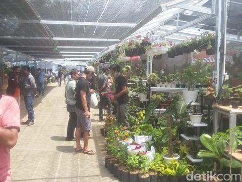 Melihat kemeriahan pameran tanaman hias di Bogor