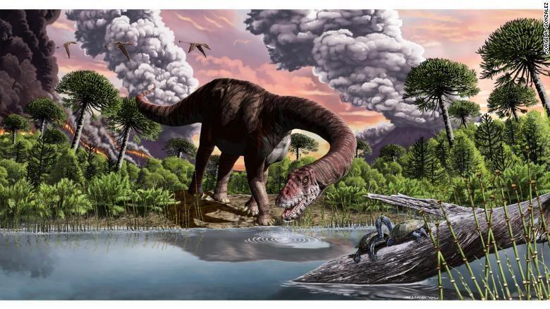 Dinosaurus sauropoda