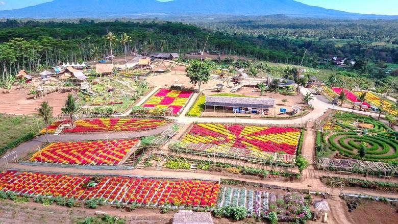 Kebun warna-warni
