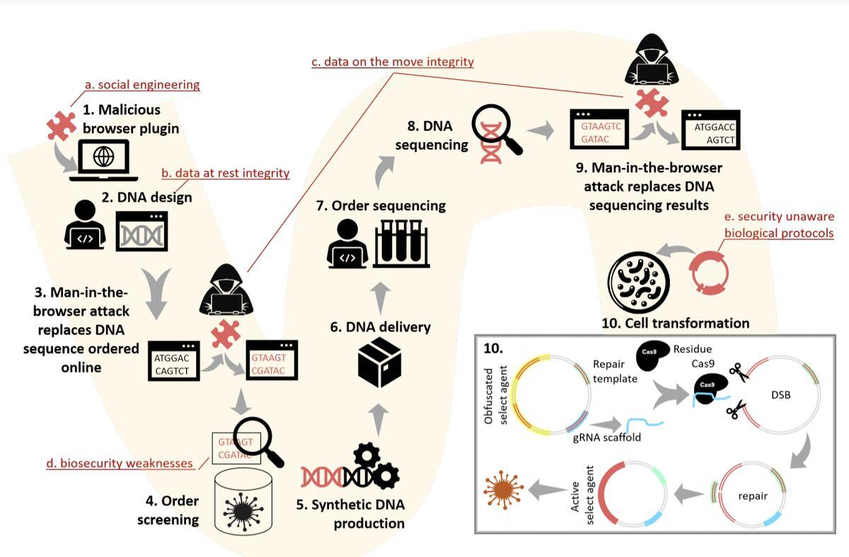 Serangan siber DNA