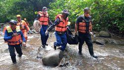 Bayi dari Satu Keluarga Terseret Arus Sungai di Banyuwangi Ditemukan Tewas