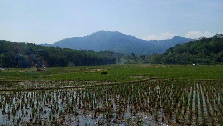 Gunung di Cianjur, Jawa Barat.