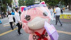 Di Jepang, Kucing Lucu Ini Jadi Maskot Anti-Corona