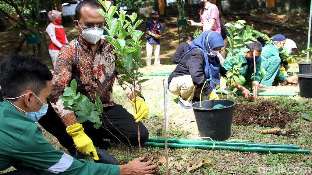 Menghijaukan Kota Depok Lewat Menanam Pohon