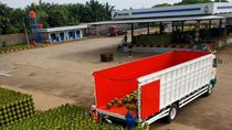 Nataru, Pertamina Tambah Pasokan Gas LPG 3 Kg di Lampung & Bengkulu