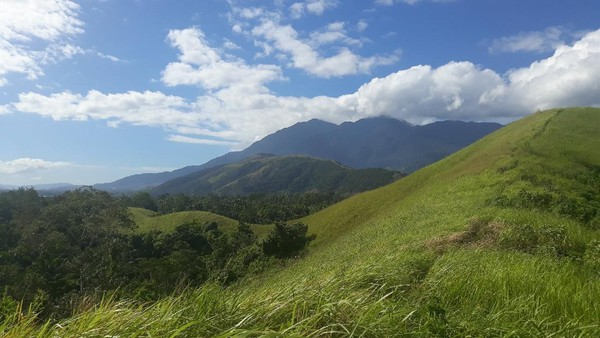 Inilah Bukit Yomokho yang berada di tepi Danau Sentani. Tepatnya di Distrik Sentani Timur, Kabupaten Jayapura, Papua. Bukit Yomokho ini berbentuk memanjang. Permukaannya ditumbuhi oleh rumput ilalang. (Hari Suroto/Istimewa)