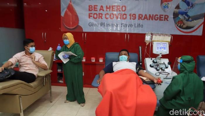 donor darah plasma konvalensen