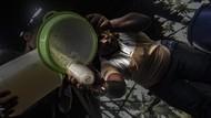Geliat Produksi Sopi di Maluku