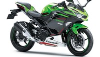 Ada yang 4 Silinder, Kawasaki Ninja 250 2 Silinder Tetap Disegarkan