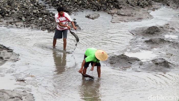 Belum maksimalnya kegiatan operasional Jeep wisata di lereng Merapi dimanfaatkan oleh warga sekitar. Salah satunya dengan menambang pasir.