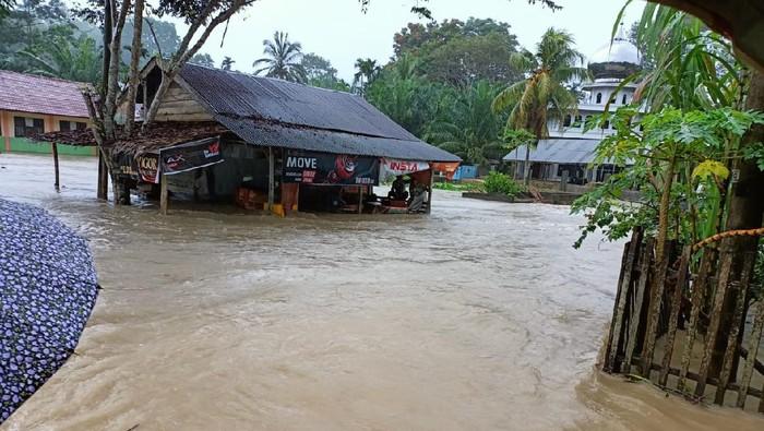Sejumlah desa di Aceh Timur dan Aceh Tenggara terdampak banjir akibat hujan deras terus menerus (dok BPBA)