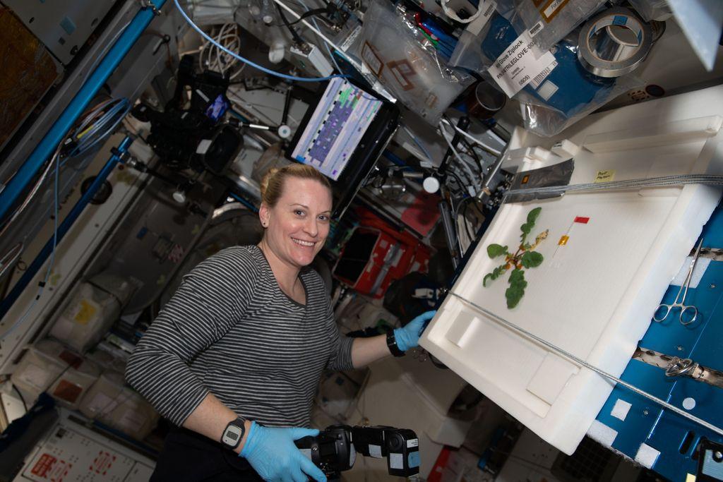 Keren! Astronot NASA Berhasil Tanam 20 Lobak Di Luar Angkasa