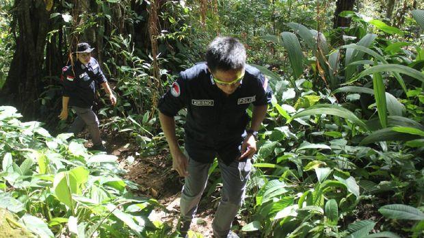 Bareskrim Polri memusnahkan 5 hektare ladang ganja di Mandailing Natal, Sumut (dok Istimewa)