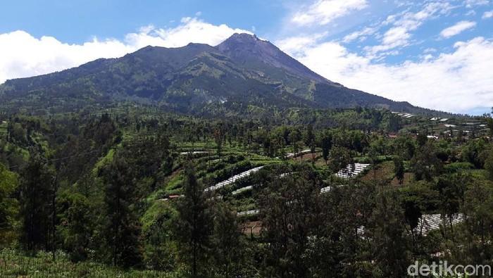 Cuaca cerah di Kecamatan Selo, Boyolali, membuat Gunung Merapi tampak jelas dari kaki sampai puncaknya. Begini keindahan Gunung Merapi yang kini berstatus Siaga.