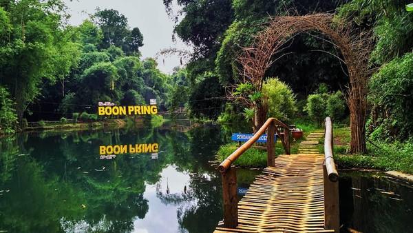 Boonpring Andeman terinspirasi dari Sagano Bamboo Forest di Kyoto. Pastinya kawasan ini bisa jadi spot instagramable untuk wisatawan. (Boonpring Andeman/instagram)