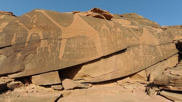 Namanya Rock Art, berada di gurun Jabel Umm Sinman, situs ini masuk dalam daftar warisan UNESCO karena berumur lebih dari 10.000 tahun. (Saudi Commission for Tourism and Heritage)
