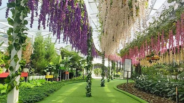 Spot instagramable berupa taman bunga yang cantik bisa traveler temui di Florawisata San Terra. Wisata ini juga punya replika bangunan ala Belanda dan Korea (Florawisata San Terra/instagram)