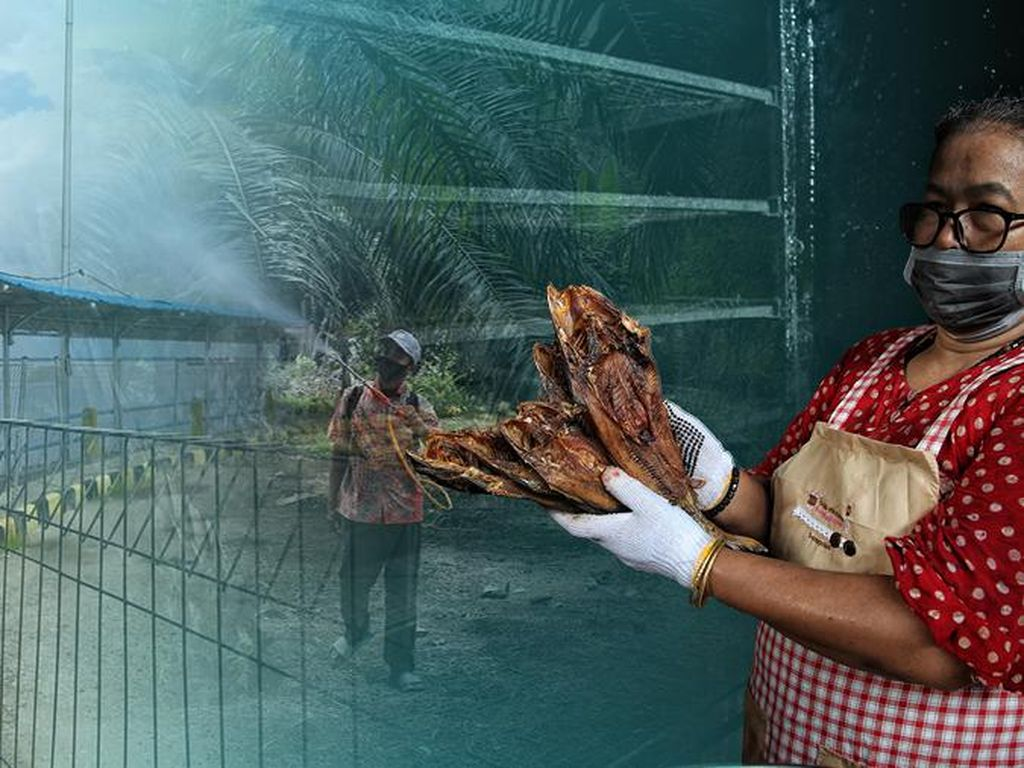 Wisata Rupat, Malaysia dari Riau