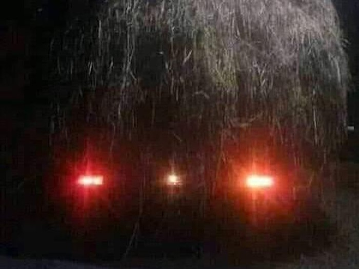 Mobil pikap angkut jerami disangka genderuwo
