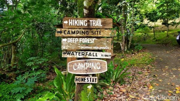 Wisata ini dibangun pada tahun 1999. Ada berbagai fasilitas untuk wisatawan mulai dari air terjun hingga lokasi penginapan. (Tasya Khairally/detikcom)