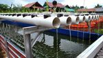 Budidaya Lele di Kampung Ramah Lingkungan