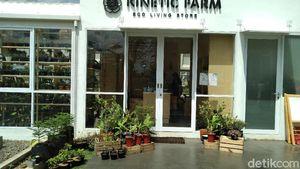 Urban Farm PIK, Tempat Hangout Seru di Tengah Kebun Sayur