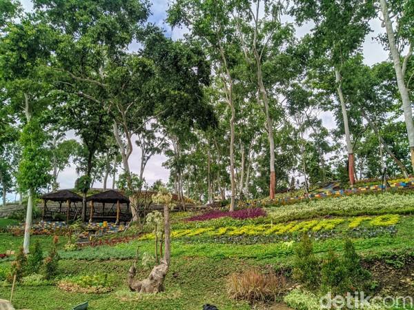 Sesampainya di puncak, wisatawan langsung dimanjakan dengan pemandangan perbukitan nan hijau memanjakan mata. Disini wisatawan bebas berfoto dan berjalan-jalan menikmati lokasi wisata. Bukit Soeharto ini berada di petak 137 f wilayah Resort Pemangkuan Hutan (RPH) Badegan.
