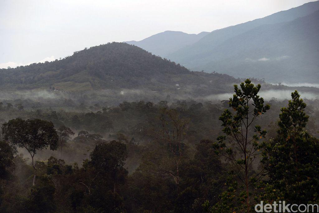 Indonesia tidak pernah kekurangan destinasi wisata yang menarik untuk disinggahi. Perbatasan Aruk, Kalimantan Barat, juga menyajikan alam yang indah.