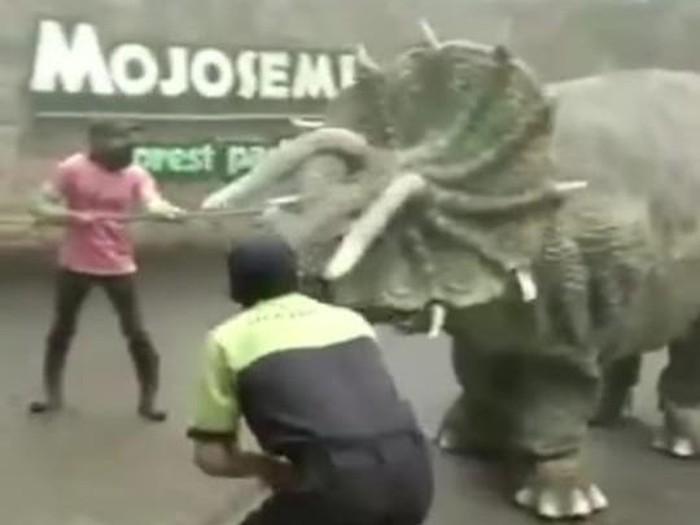 Video dinosaurus mengamuk viral di media sosial. Peristiwa itu terjadi di Mojosemi Forest Park, Magetan.
