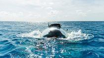 Foto: Kapal Selam Transparan, Mampu Menyelam hingga Kedalaman 1.000 Meter