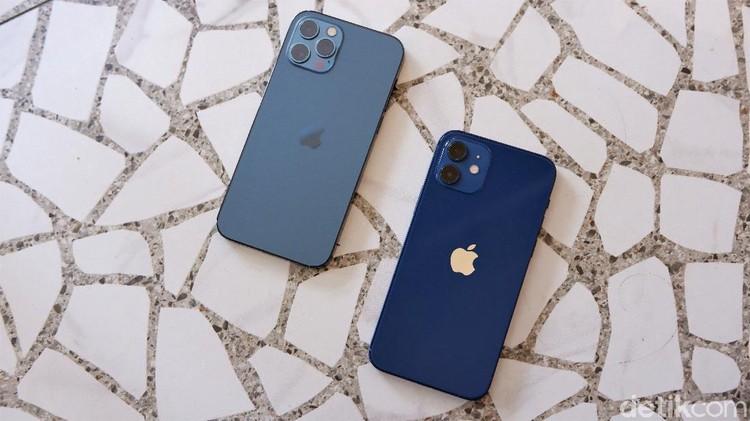 iPhone 12 dan iPhone 12 Pro