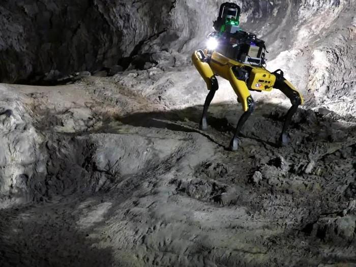 Robot anjing penjelajah Mars