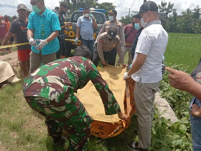 Lagi, lagi dan lagi. Jebakan tikus listrik di Ngawi menelan korban jiwa lagi.