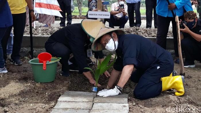 Mentan Syahrul Yasin Limpo menanam pohon kelapa di Karanganyar.