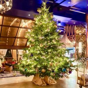 Bernilai Rp 211 M, Inikah Pohon Natal Termahal di Dunia?