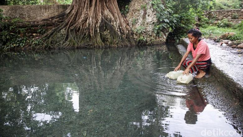 Mata air Tubaki merupakan salah satu sumber air di Malaka, NTT. Mata air ini sangat membantu masyarakat sekitar untuk mendapatkan air bersih.