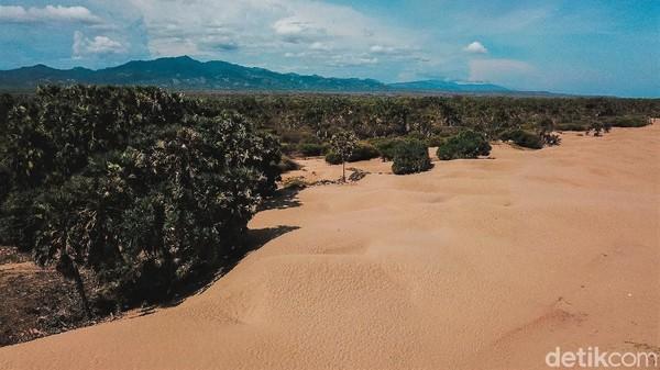 Pantai ini diketahui berjarak kurang lebih 15 km dari pantai menawan lainnya di kawasan Timor Tengah Selatan, yakni Pantai Kolbano.
