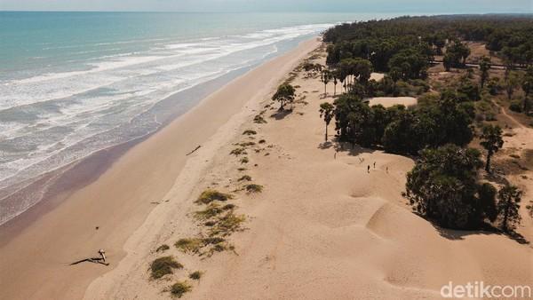 Tak perlu khawatir sulit mengakses pantai cantik ini karena jalan menuju Pantai Oetune sudah dibangun dengan baik.