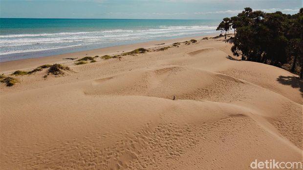 Hamparan pasir di Pantai Oetune jadi daya tarik tersendiri bagi wisatawan. Pantai itu pun cocok dijadikan tempat berselancar karena ombaknya yang tinggi.