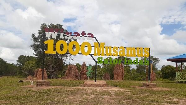Dalam bahasa Suku Marind Anim, rumah rayap tanah ini disebut dengan bomi. Namun di Merauke, mereka lebih populer dengan sebutan musamus. Traveler bisa melihat musamus ini di Wisata 1000 Musamus Merauke. (Hari Suroto/Istimewa)