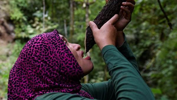 Mereka juga memanfaatkan makanan dan minuman dari alam sekitar. Salah satunya minum air dari akar tanaman.