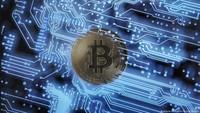 Harga Bitcoin Meroket, Pengguna Indodax Ikut Cuan