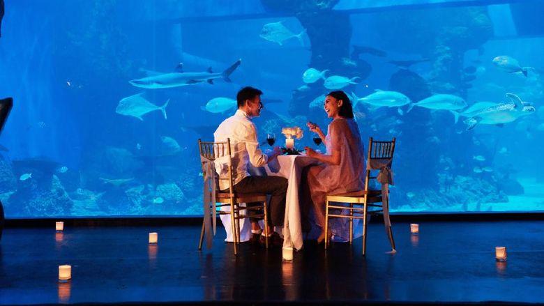 Acara Jakarta Aquarium di bulan Desember.