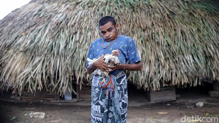BRI membantu Maximus untuk mengembangkan usaha ternak ayamnya.