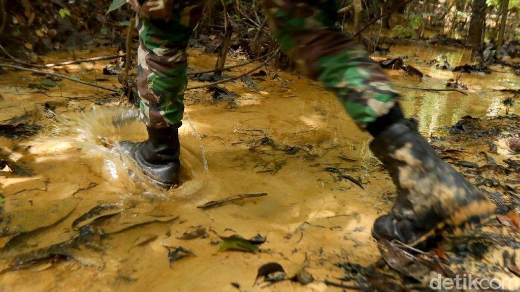 Menyusuri Hutan Kalimantan, Mencari Batas Indonesia-Malaysia