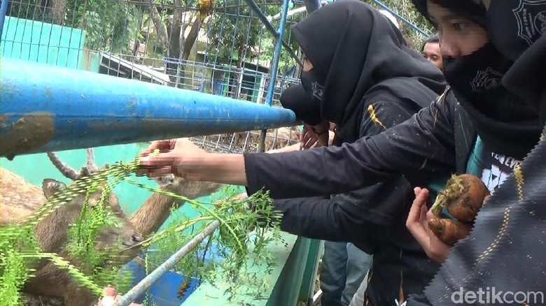 Serulingmas Zoo