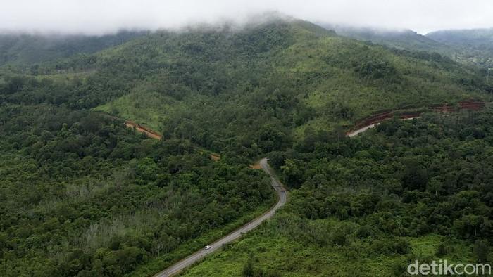 Pulau Kalimantan disebut sebagai salah satu paru-paru dunia karena luas hutannya yang mencapai hingga 40,8 juta hektar. Beginilah potret hijaunya hutan Kalimantan.